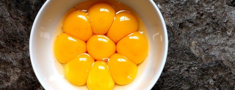 bowl of egg yolks