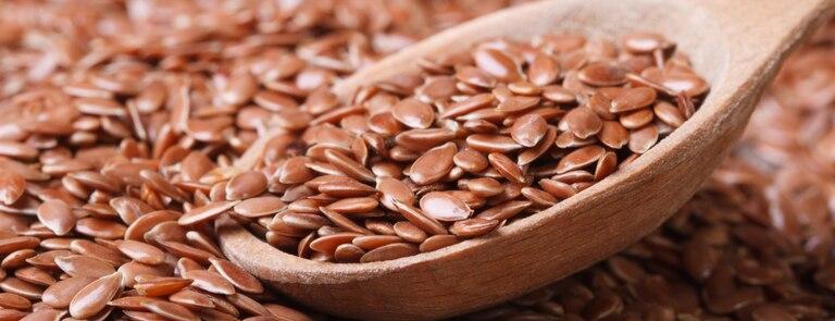 Top Benefits Of Flaxseed