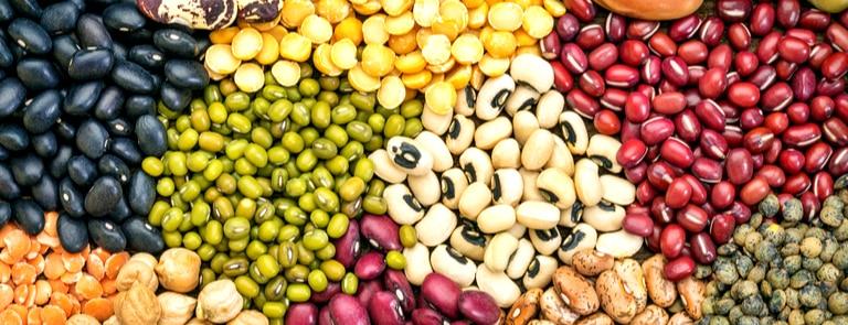 Types of Legumes & Legume Benefits