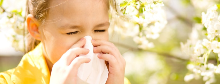 How To Fight Summer Allergies