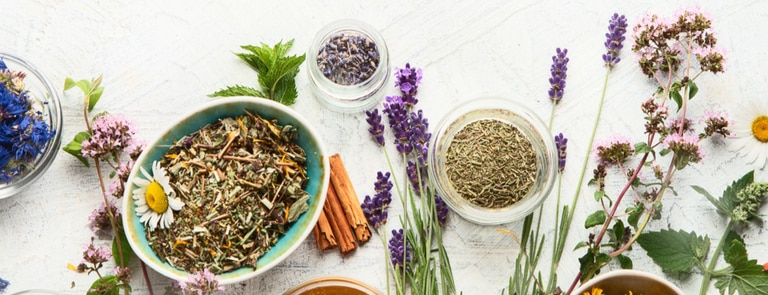 Your Ultimate Guide To The Top 25 Herbal Medicines