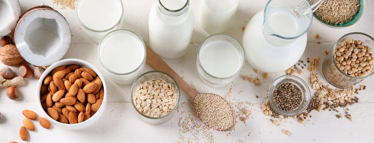 Which vegan milk is right for you?
