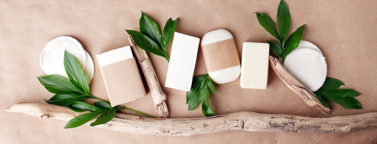zero waste beauty products next to tree branch and leaves