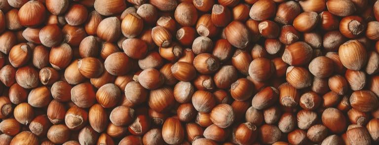 Benefits of hazelnuts image