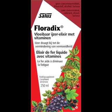 Floradix Sirop fer formule 250 ml