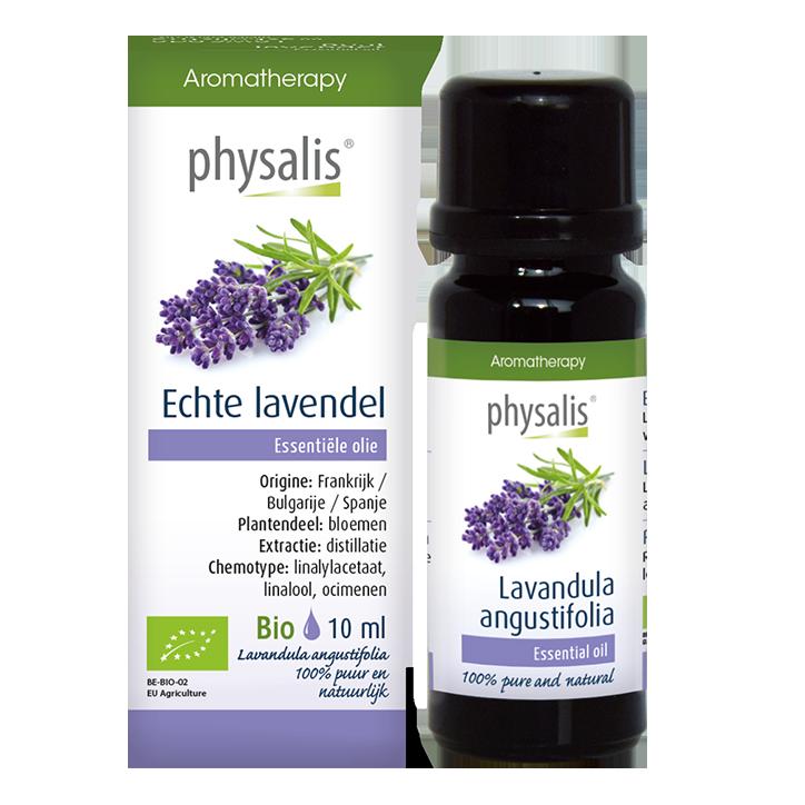 Physalis Lavendel Echte Bio