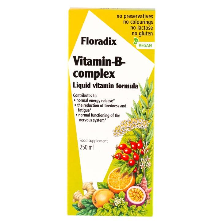 Floradix Vitamin B Complex Liquid 250ml