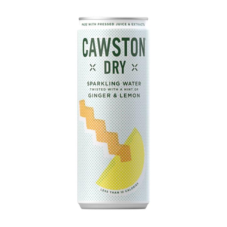 Cawston Dry Ginger & Lemon 250ml