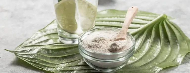 What is vegan collagen made from?