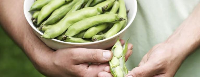 Five fantastic gluten-free sources of fibre