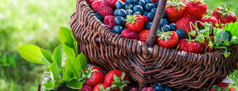 A Guide To Foods That Can Help Improve Your Skin