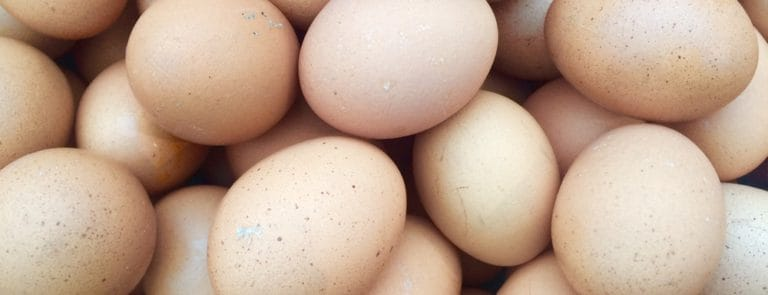 The health benefits of protein-packed eggs image