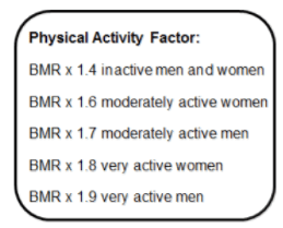 physical activity factor