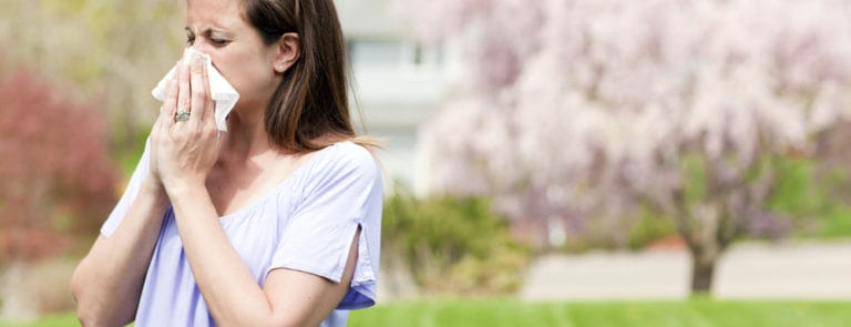 How to prevent and treat hay fever and common colds image