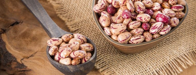 Pinto beans for protein, calcium and iron image