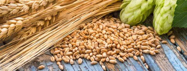 Why Barley Is Great For Your Health