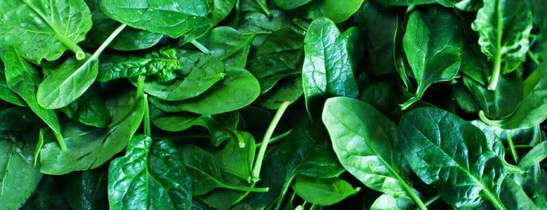 Vitamin-rich spinach and delicious recipe ideas image