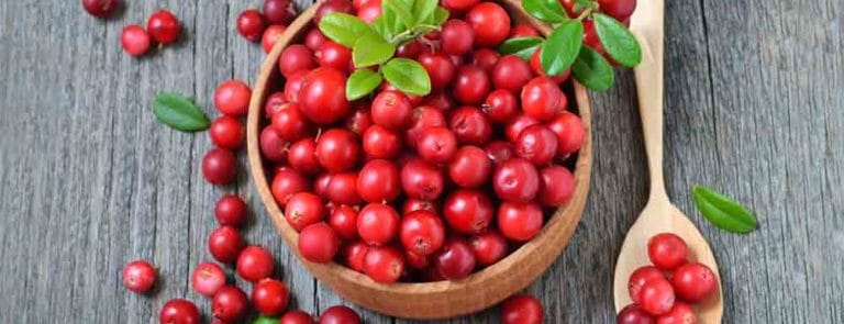 How Cranberry Can Help Fight Off UTIs
