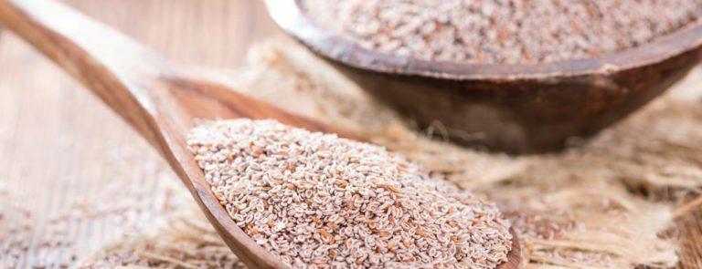 fibre supplements