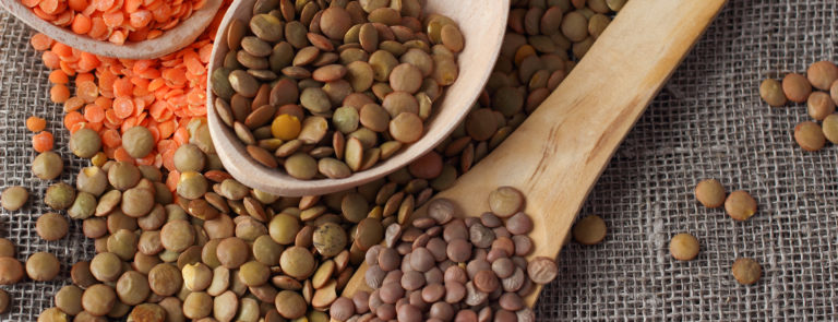 Everything you need to know about lentils image