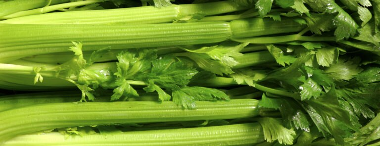 The Different Health Benefits of Celery