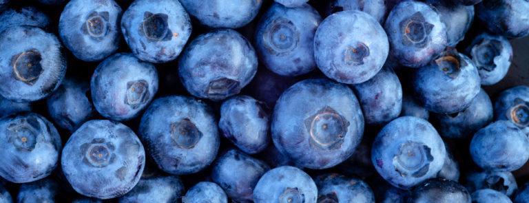 8 Health Benefits Of Blueberries image