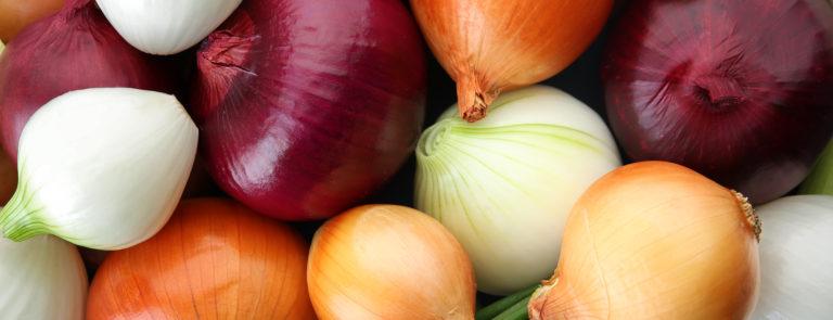 Health benefits of onions image