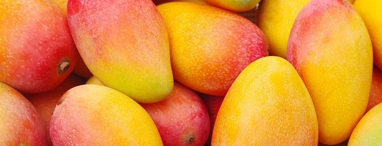 The health benefits of mango image