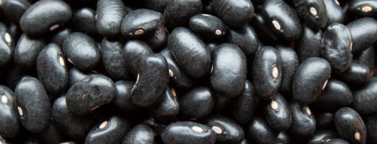 Health Benefits Of Black Beans