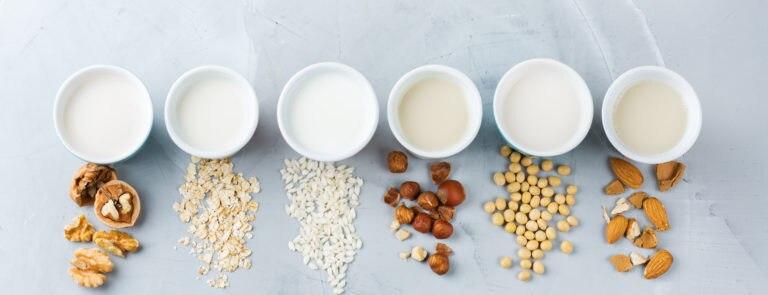 Milk Alternatives For Vegans