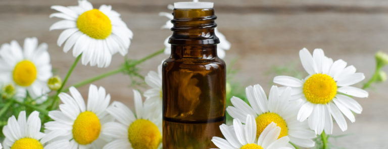 Chamomile oil: Uses and benefits image