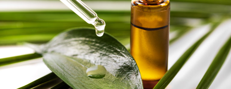 8 Tea Tree Oil Uses (Some Might Surprise You) image