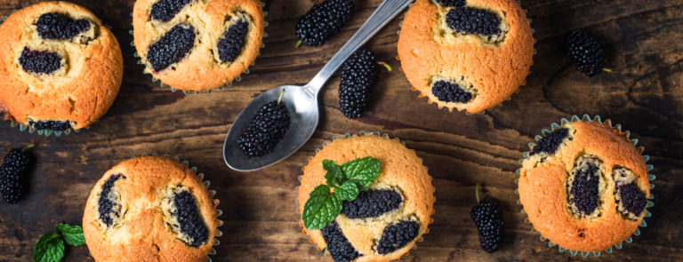 Dired Mulberry Recipes