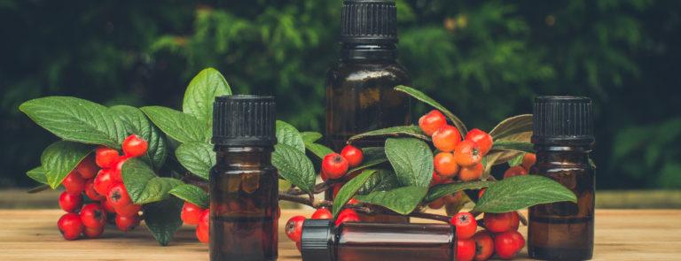 Essential Oil Christmas Blend Recipes
