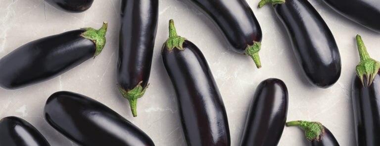 Aubergine Health Benefits & Nutrition