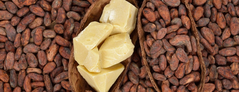 Cocoa Butter Benefits For Skin & Hair