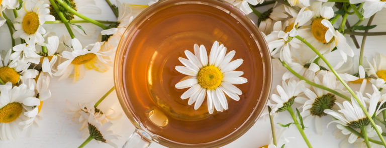 chamomile tea and chamomile flowers