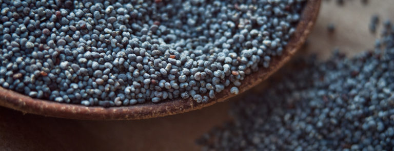 Poppy seeds health benefits image