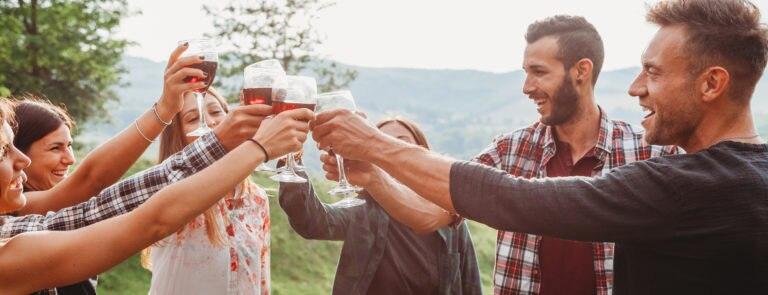 Is Wine Vegan? Plus best alternatives