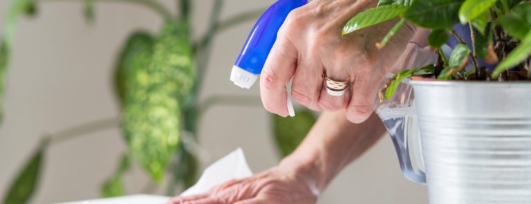 10 Of The Best Eco Cleaning Products