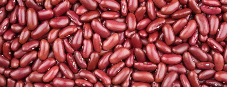 Kidney bean benefits image