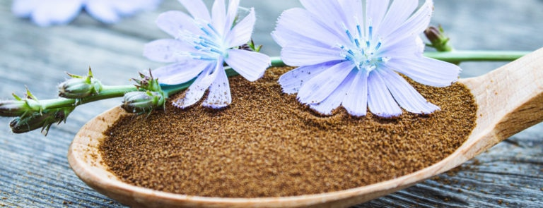 Is Chicory Coffee A Good Alternative